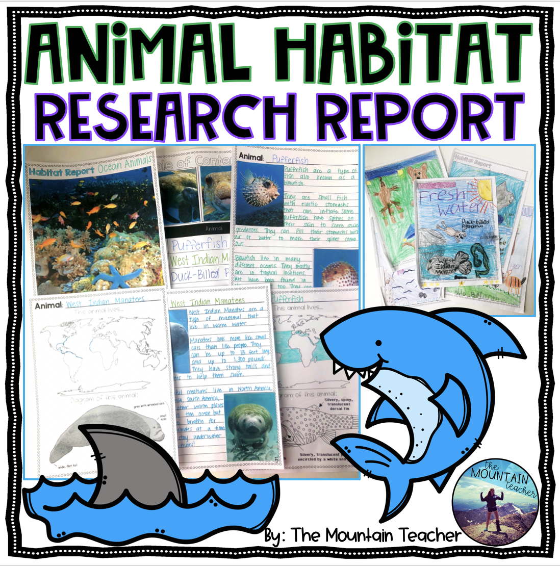 Animal Habitat Report for Second Grade Students