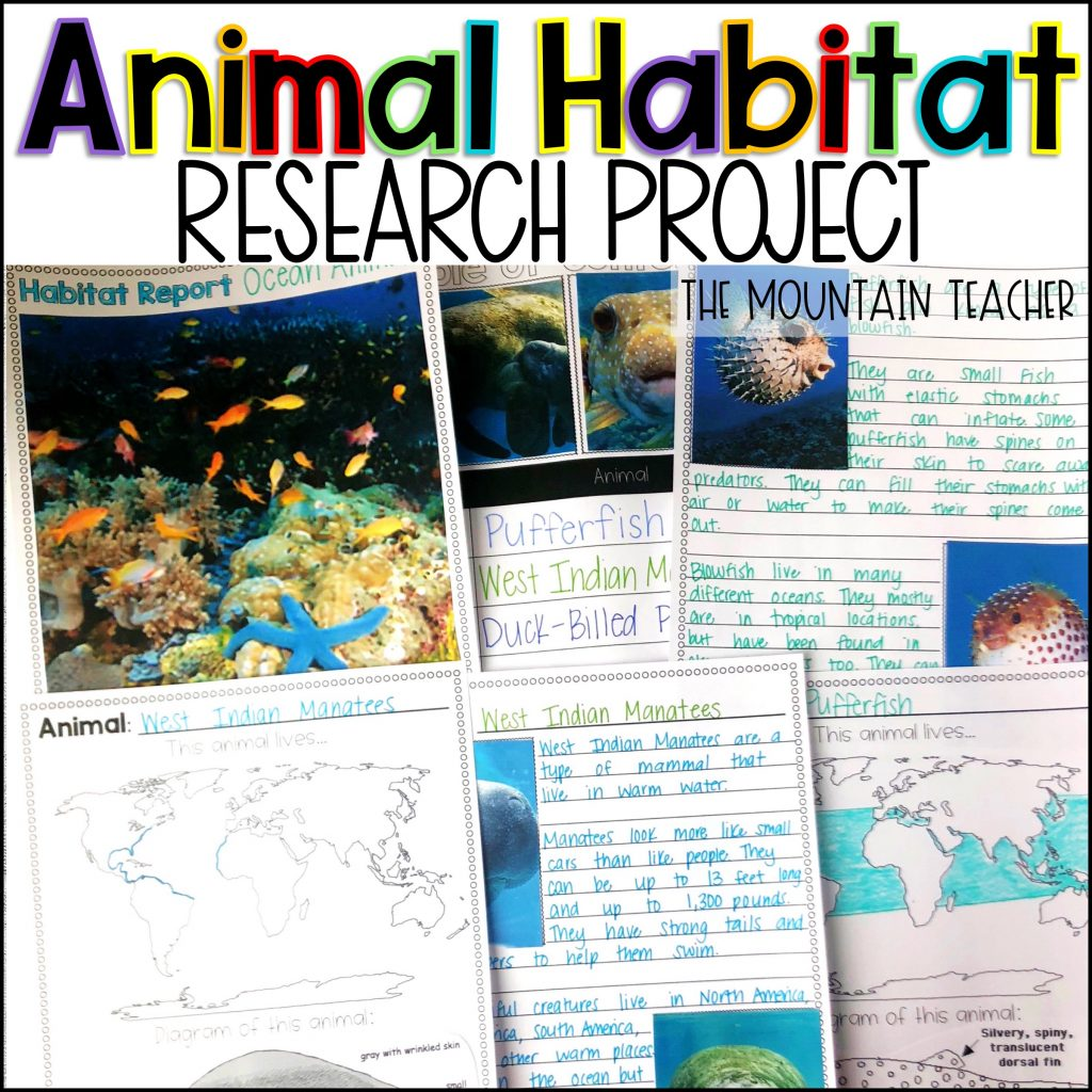 Animal Habitat Research Report Writing Project for Elementary Students01