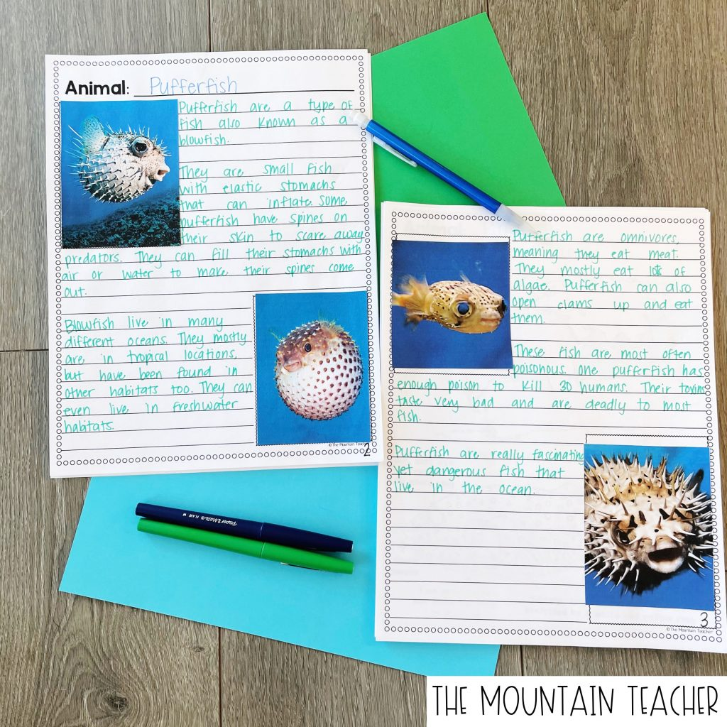 Animal Habitat Research Report for 2nd or 3rd Graders 303