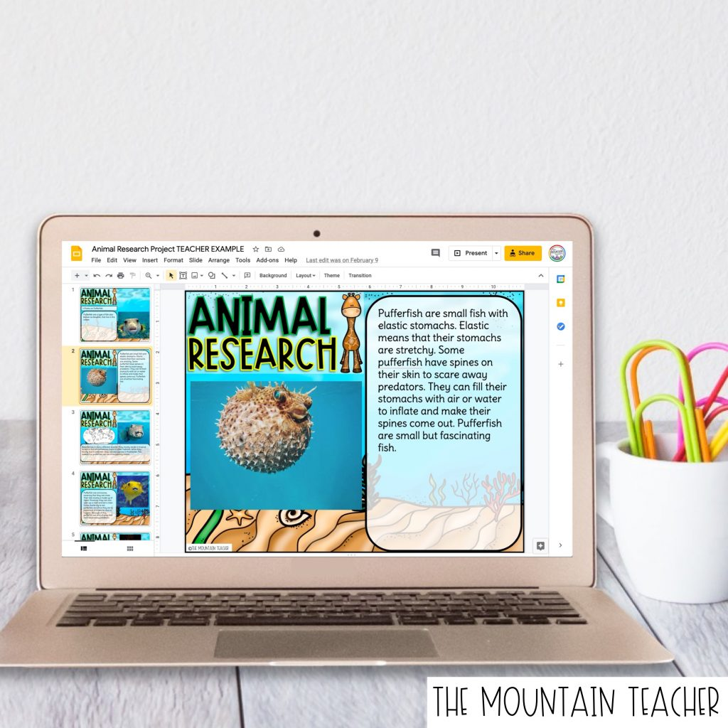 Digital Animal Habitat Research Report for 2nd or 3rd Graders101