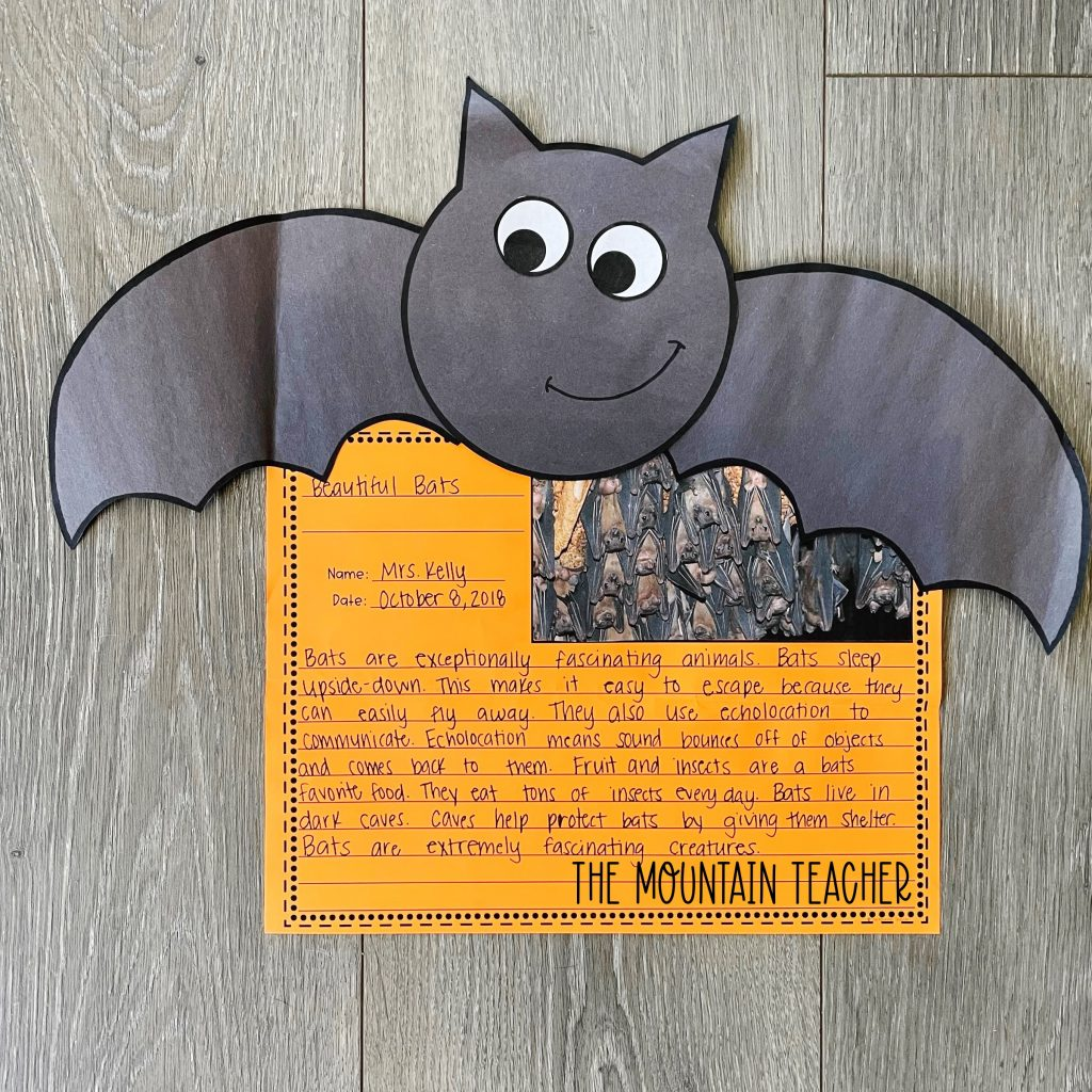informative writing activity round up - bat research craft and project