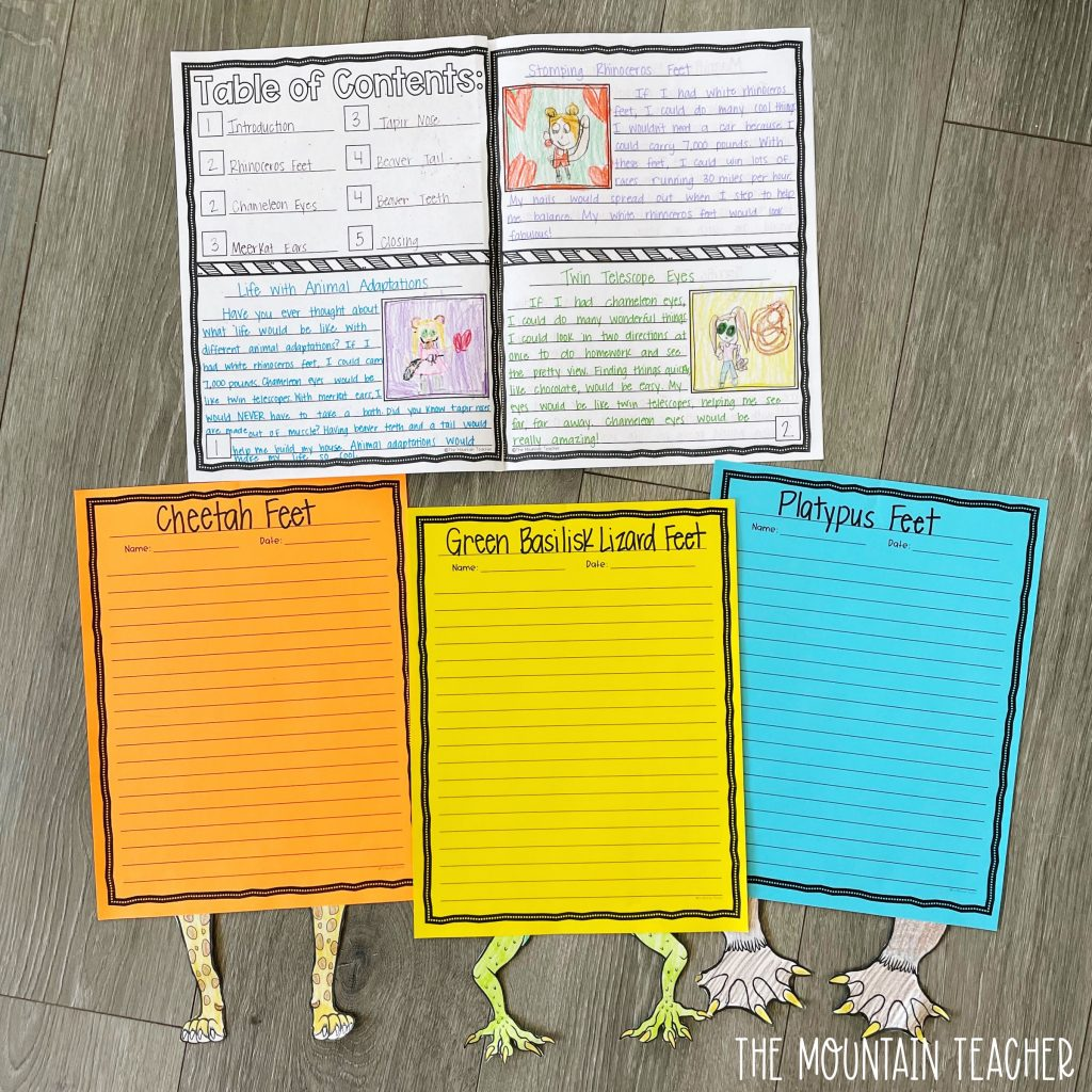 informative writing activity round up - what if you had animal feet adaptations research craft and project