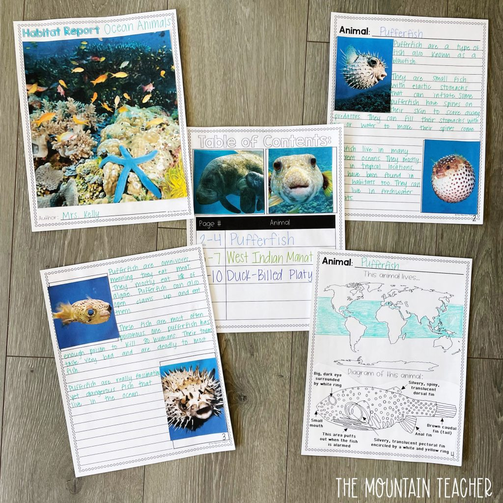 informative writing activity round up - animal and habitat research craft and project