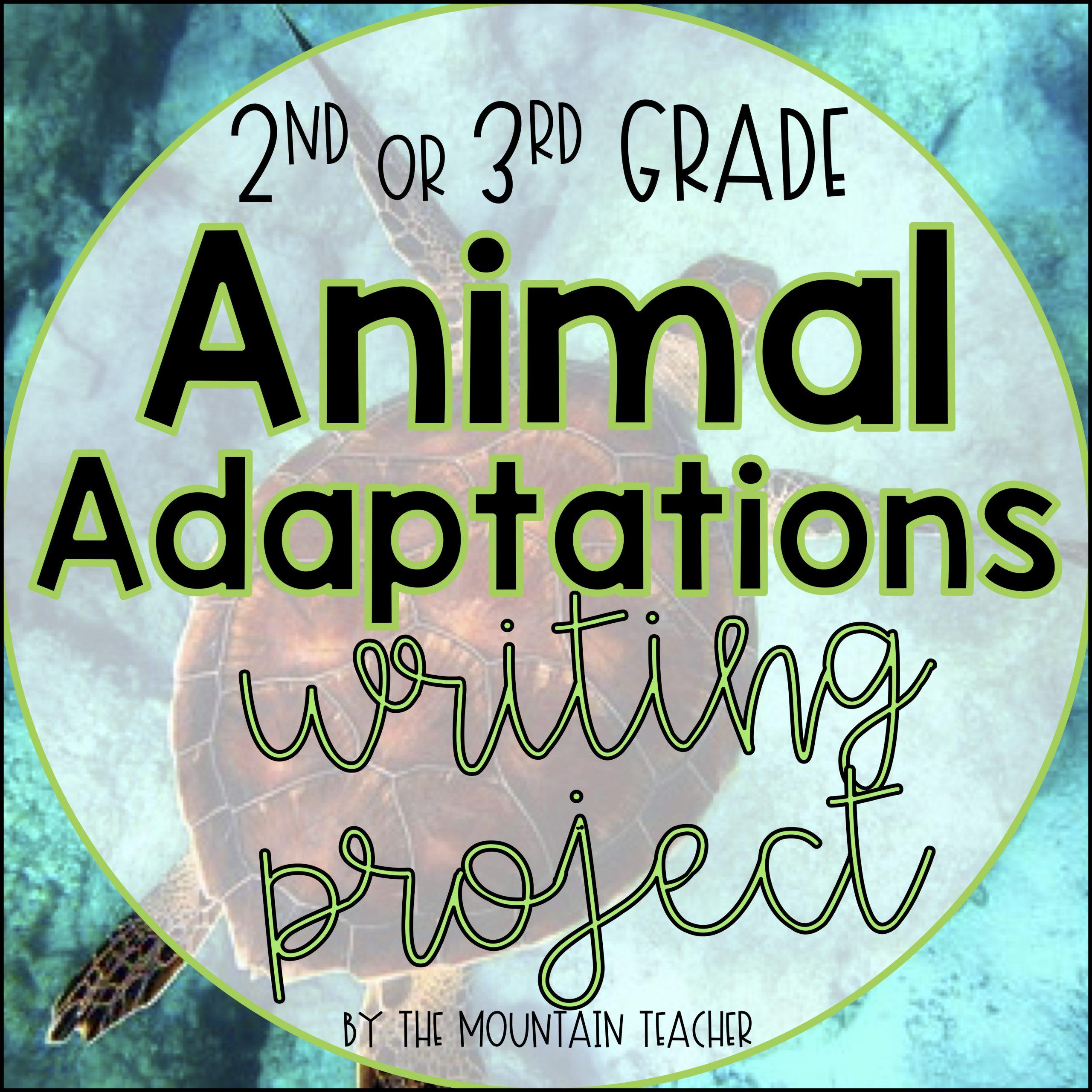 Animal Adapt