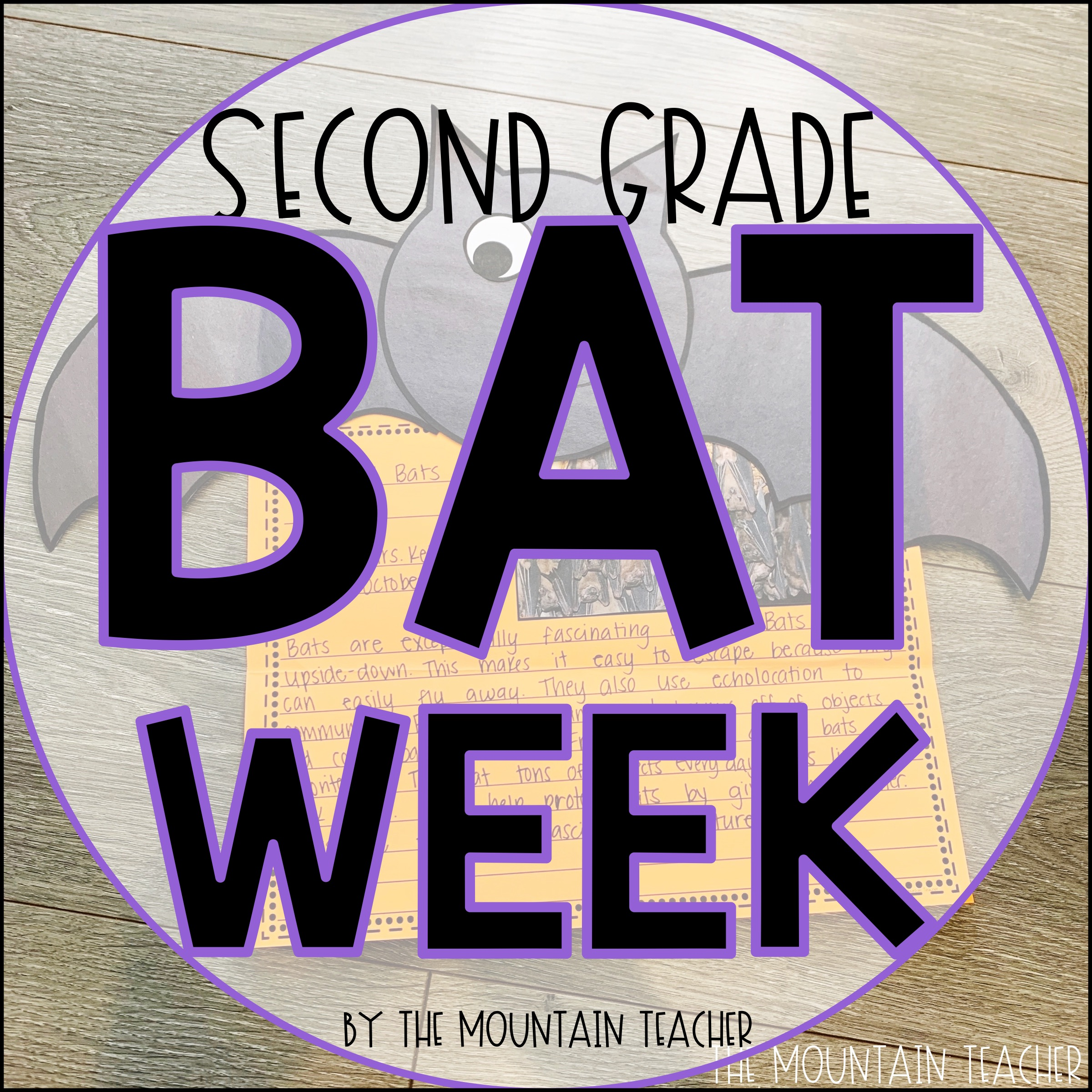 Bat Week for Second Grade or First Grade